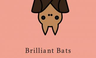 Poster of cartoon bat