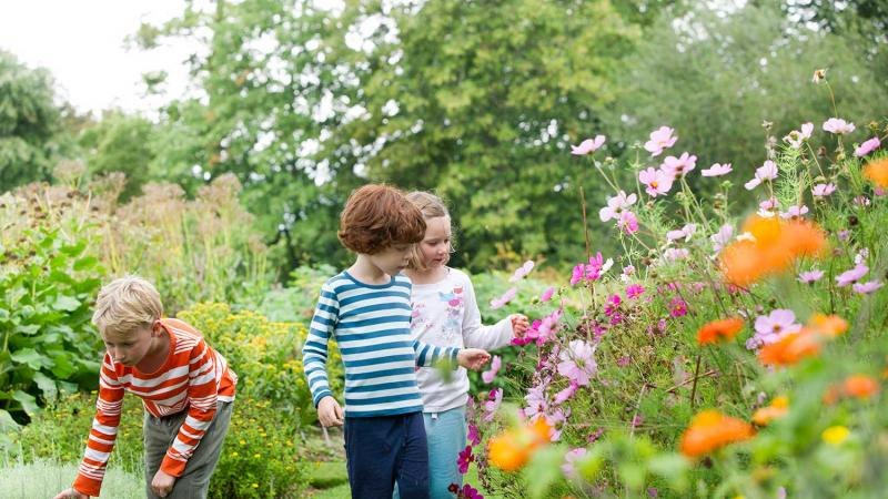Children exploring the Botanical Gardens in summer