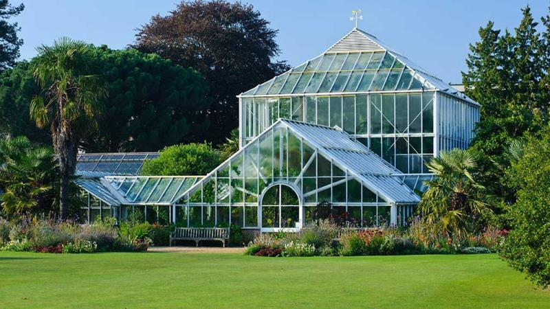 The greenhouse in the sun